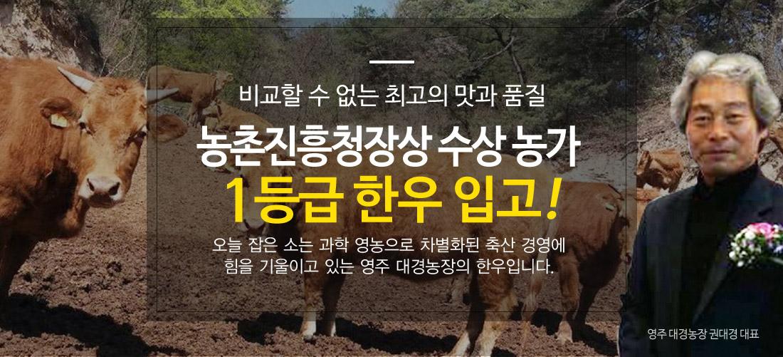 농촌진흥청장상 수상 영주 대경농장 1등급 한우